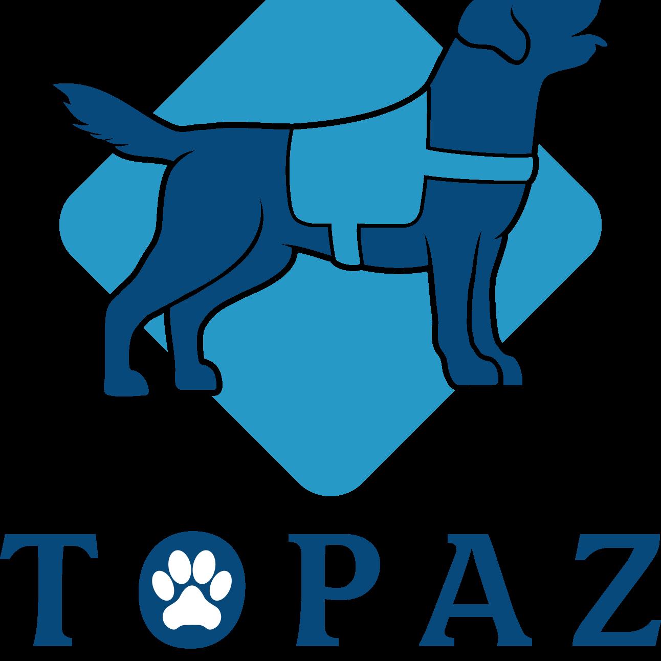 Topaznew2